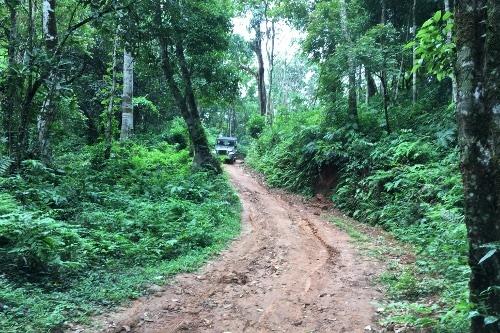 Kerala in Südindien