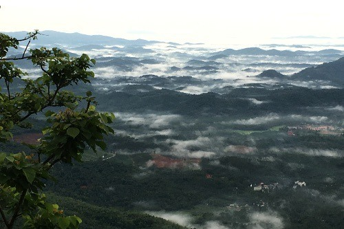 Kerala Indien - Bio-Gewürze